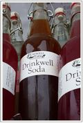 3.9X5.9 Drinkwell Soda Bottles